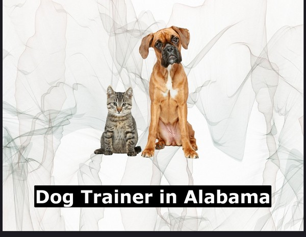 Dog Trainer in Alabama