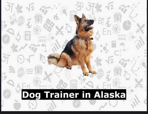 Dog Trainer in Alaska
