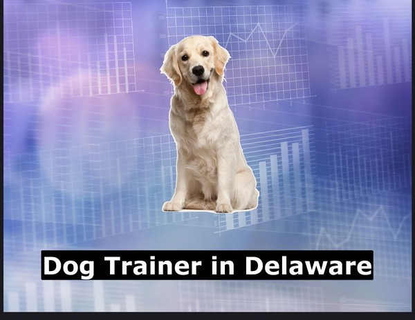 Dog Trainer in Delaware