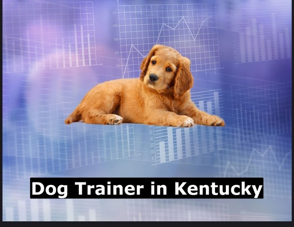 Dog Trainer in Kentucky