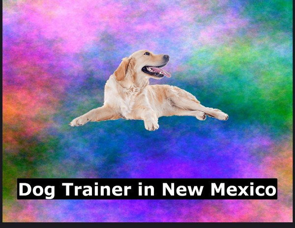 Dog Trainer in New Mexico