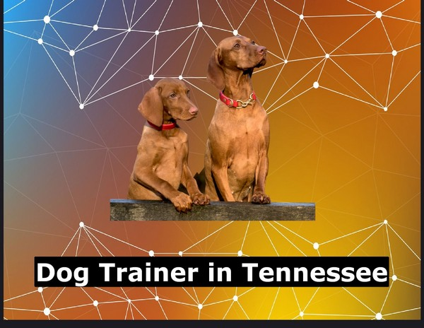 Dog Trainer in Tennessee