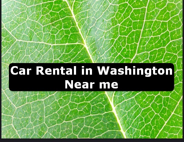 Car Rental in washington Near Me USA